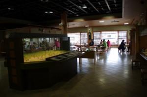 天理市トレイルセンター(トレイル青垣)