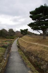 山の辺の道(崇神天皇陵の畔)