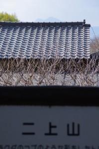 かすかに見える二上山(桧原神社から)