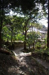 玄賓庵付近(山の辺の道)