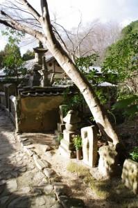 玄賓庵付近の石塔ほか(山の辺の道)