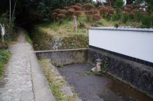 狭井川付近(山の辺の道)