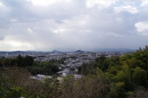 大美和の杜展望台からの眺望