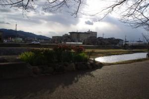 初瀬川金屋河川敷公園