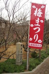 新開臥龍梅公園