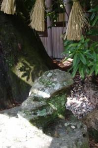 御神木の前の石(茜社)