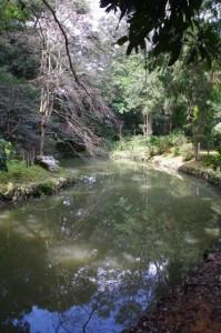 御池(伊雑宮)