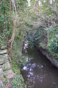 火除橋の下を流れる堀川(外宮)