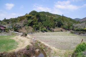 「ひこたきみち」の道標付近の風景