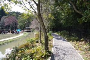 勾玉池の遊歩道(左手は菖蒲苑)