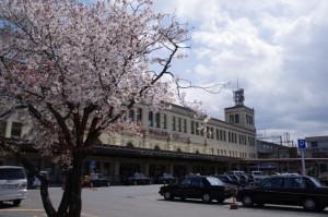 桜(宇治山田駅前)