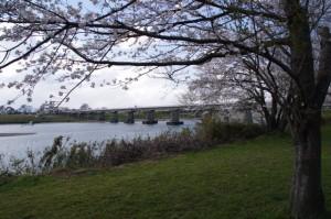 旧跡・宮川 桜の渡し(下の渡し)方向を望む