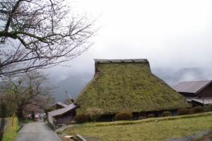 藁葺きの家(三多気の桜)