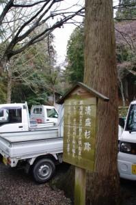 清盛杉跡(真福院)