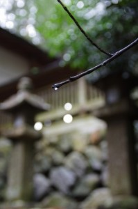 常夜燈(御杖神社)