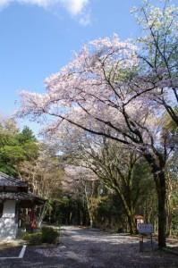 真言院(白山町川口)