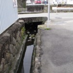 河崎の環濠遺跡