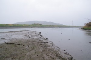 五十鈴川と朝熊川の合流点(虎石から望む)