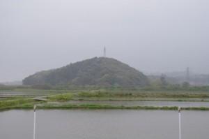朝熊神社の社叢