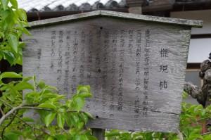 瑞光寺の権現柿(6)の説明板