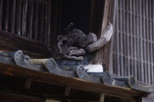 漆喰彫刻 龍(C)