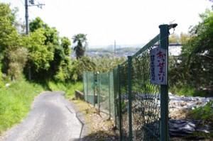「おいせまいり札」(谷山跨道橋付近)