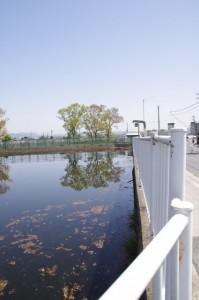畑バス停(奈良交通)付近の池