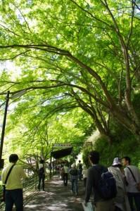 吉野ロープウェイ千本口駅へ