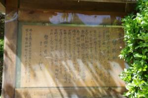 幤掛桜の説明板