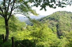 七曲坂よりの風景