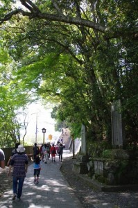 仁王門からの参道(金峯山寺)