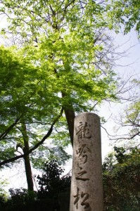 庭園(竹林院群芳園)