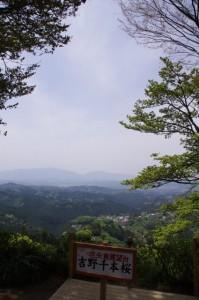 花矢倉展望台からの風景