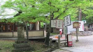 春日大社神苑「万葉植物園」前の春日荷茶屋