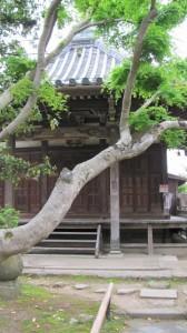 香薬師堂(新薬師寺)