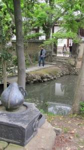 香薬師堂から本堂を望む(新薬師寺)