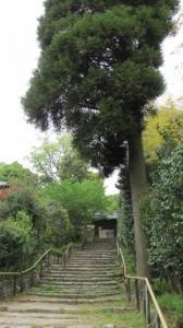 山門への石階(白毫寺)