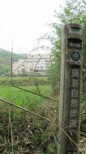 岩井川への下り