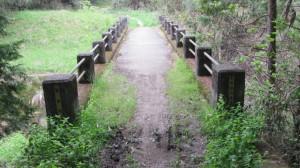東海自然歩道の橋(岩井川)
