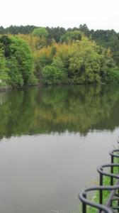 八阪神社の先の池