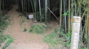 八阪神社の先の池の端にある分岐