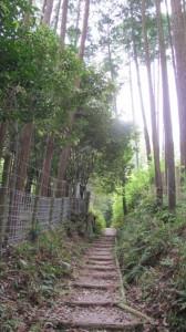山の辺の道(円照寺の境内沿い)