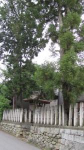 恵比寿神社(石上神宮境外末社)