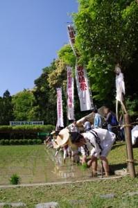 猿田彦神社 御田植祭(おみた)