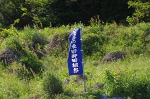 『長谷の車田御田植祭』の幟(天啓公園付近)