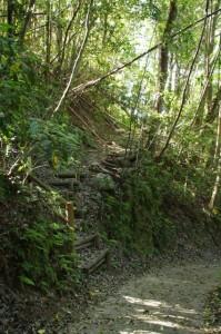 金剛座寺への階段(長谷観音道)