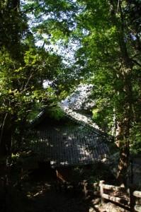 近津長谷城跡(城山)への階段から望む近長谷寺の庫裡