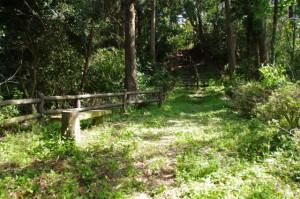 近津長谷城跡(城山)への階段の途中