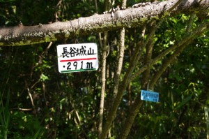 近津長谷城跡(城山)