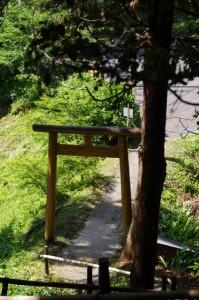 近長谷寺から駐車場への下り